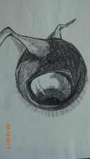 Inspiration from Redon's Eye Balloon in Pencil/Charcoal
