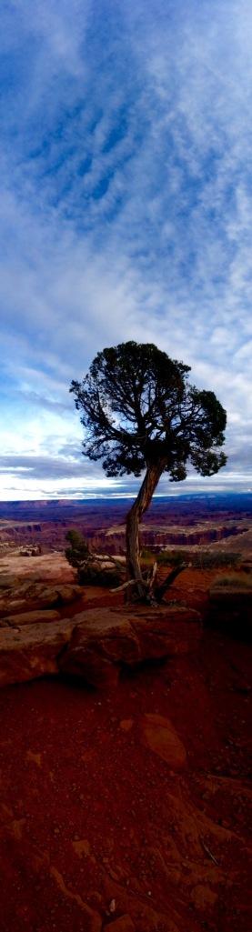(taken by The Wiser Amuser - www.wiseramuser.com)
