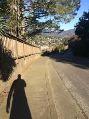 Walking Sausalito
