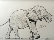 Elephant love in Pen & Ink