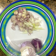 fresh shallots, garlic, onion