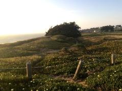 Thornton State Beach Vista