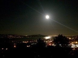 Sausalito Moonlight
