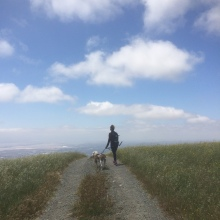 Secret of My SucCecil: Mission Peak