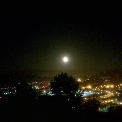 Secret of My SucCecil: Moonlight