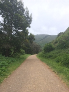 Tennessee Valley Trail & Beach_5543