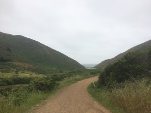 Tennessee Valley Trail & Beach_5549