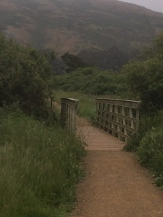 Tennessee Valley Trail & Beach_5602