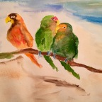 Time lapsed Lovebirds