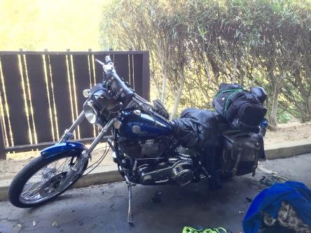 Secret of My SucCecil: Harley-Davidson