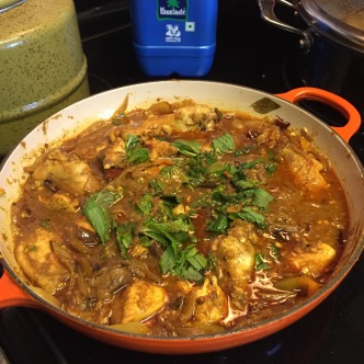 Mint Chicken Vindaloo with chicken breasts and chicken wings