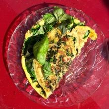 Organic Omelette