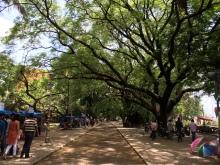 Fort Kochi 10