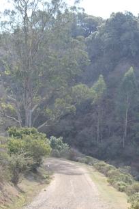 SCA Trail 11-20-15 0452