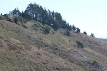 SCA Trail 11-20-15 0524