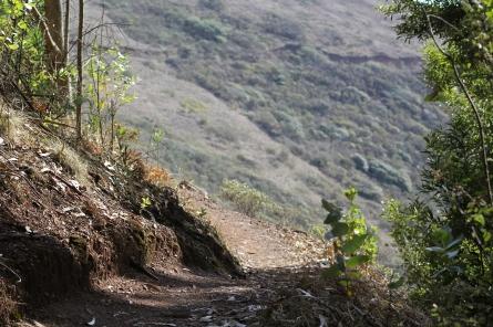 SCA Trail 11-20-15 0540