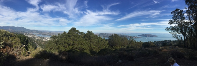 SCA Trail 7419