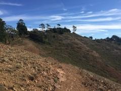 SCA Trail 7437
