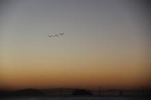 Sunrise on Bridgeway 10-29-15 9823