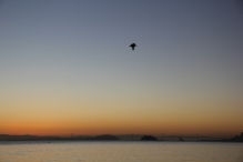 Sunrise on Bridgeway 10-29-15 9838