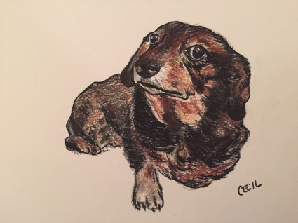 Doggies 6