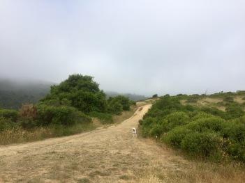Hiking 5-26-16 18