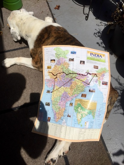 Our journey in India