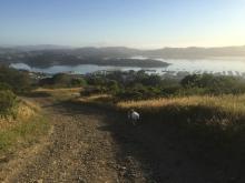 Hiking 5-16-16 _7103
